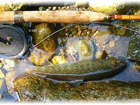 060604fishing4.jpg