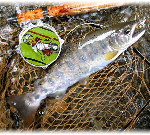 070721fishing3.jpg
