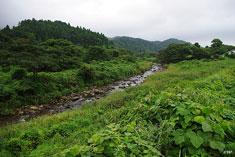 里川のライズ待ち